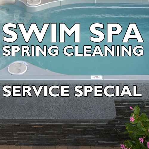 Spring Cleaning Service Special Swim Spa